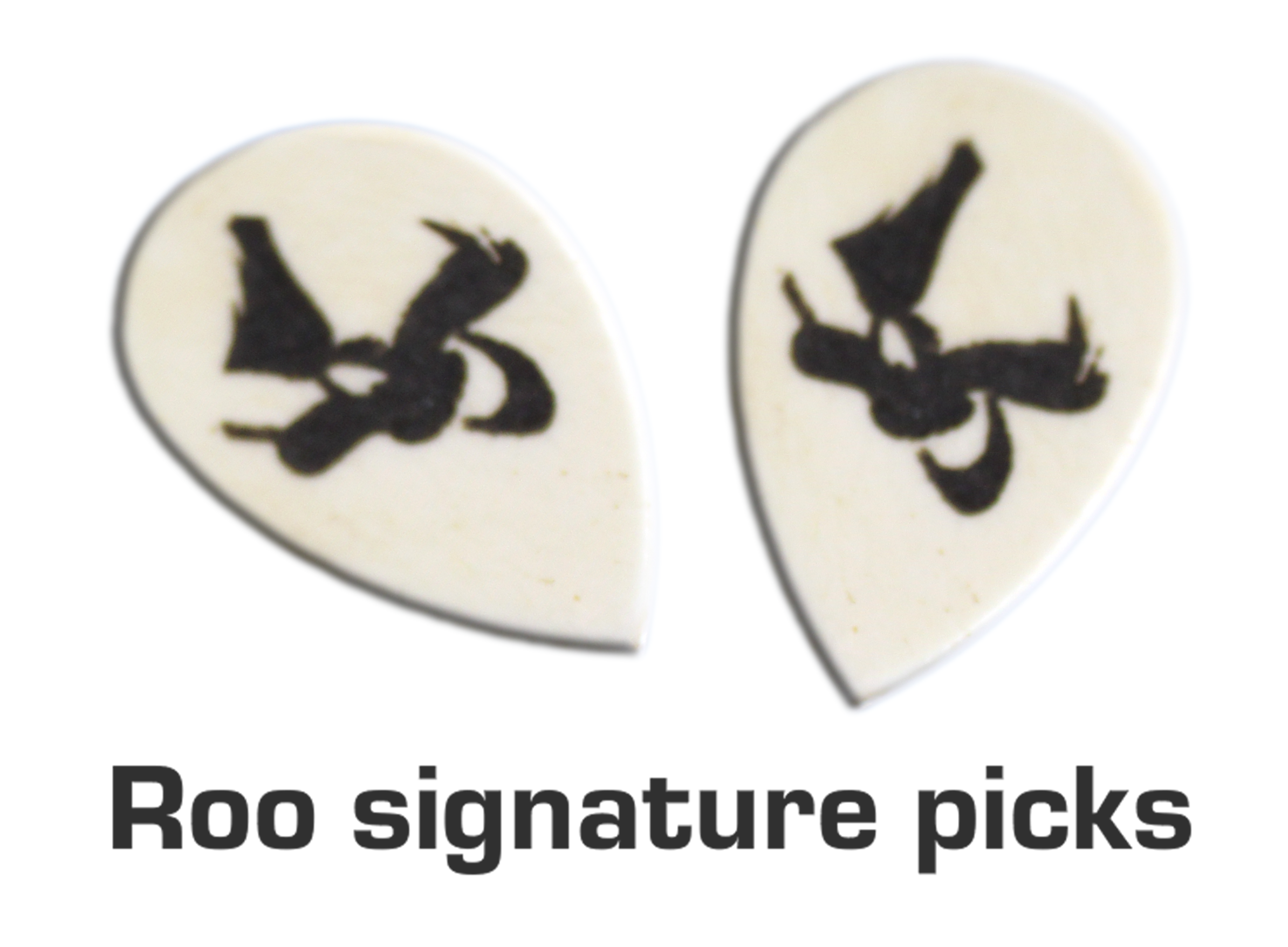 Roo picks